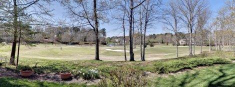 21 Golf Views