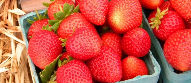 After Valentine's Day strawberry prices should fall