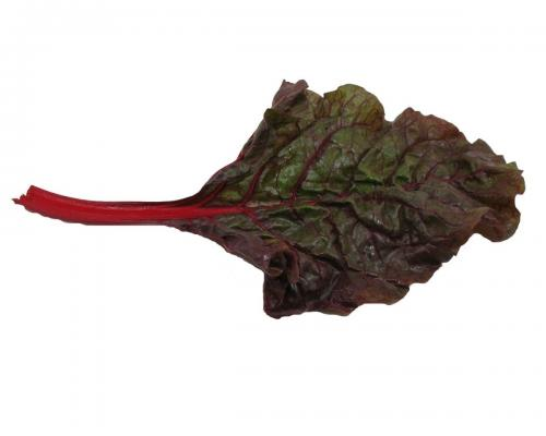 Greens, Red Chard 2