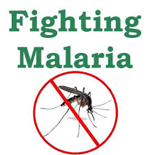 Global Fund Partners Catholic Services In Taraba For Campaign Against Malaria