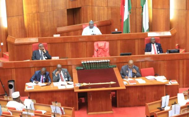 Senate Begins Amendment Of 2010 Electoral Act