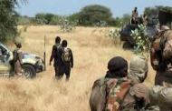 Dapchi Town Witness Boko Haram Terrorists' Attack Again