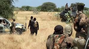 Dapchi Town Witness Boko Haram Terrorists' Attack Again