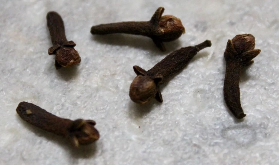 Cloves individual