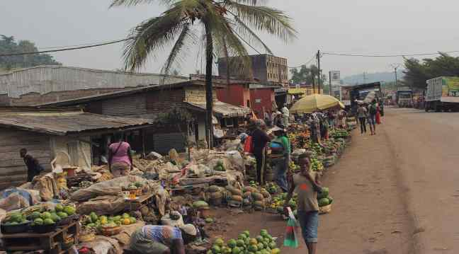 Fruit market  in Cameroon