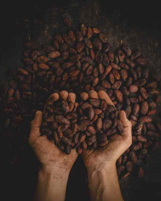 Colombian food: dried coffee beans