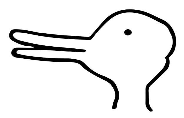 Image result for duck rabbit