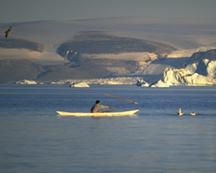 Inuit whaler. © Greenland.com