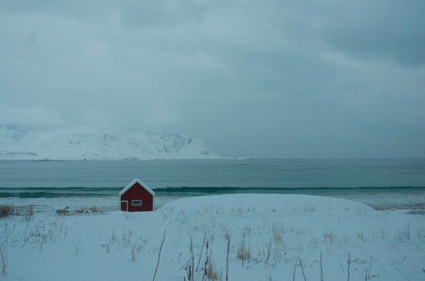 The Arctic - somebody's home. (c) Mia Bennett
