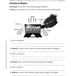 6th Grade Motion Worksheet   Printable Worksheets and Activities for  Teachers [ 3300 x 2550 Pixel ]