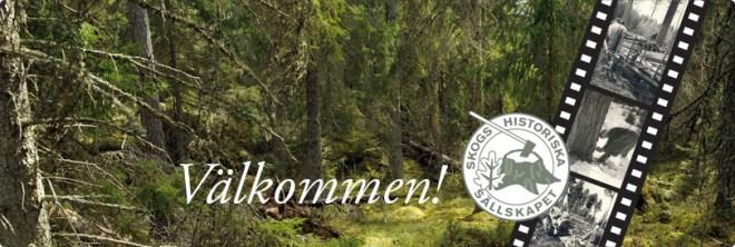 skoghistoriska sällskapet
