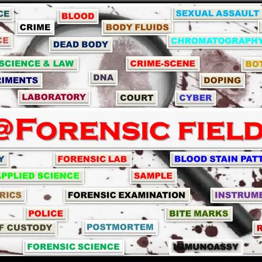 Forensic's blog