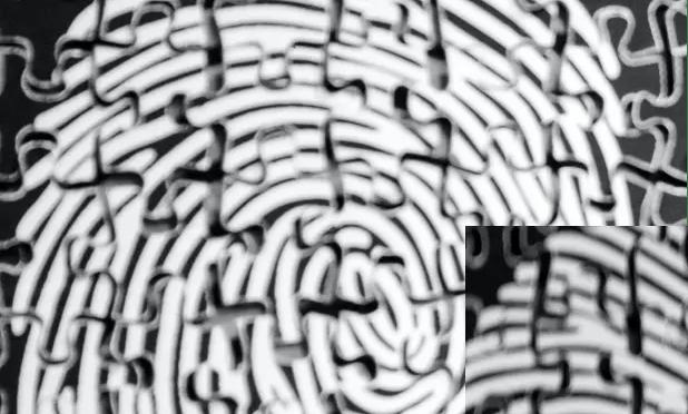 MCQs on Fingerprints