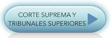 CORTE SUPREMA Y TRIBUNALESSUPERIORES.png