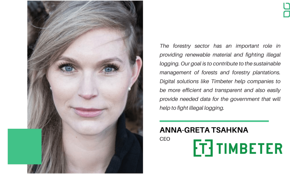 New Forest Technology Frontiers:  Interview with Anna-Greta Tsahkna of Timbeter.