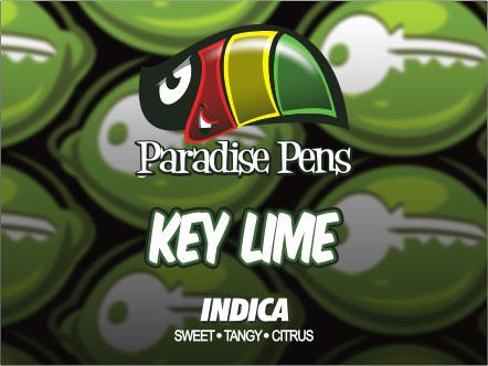 Key Lime - Paradise Pens Vape Cartridge 1000mg