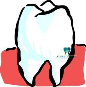 dental health in lynchburg virginia