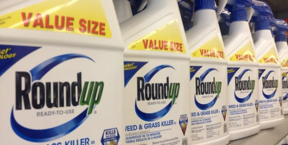 Can Roundup Affect Users For Generations To Come?