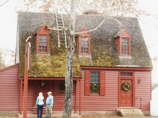 colonial williamsburg forest