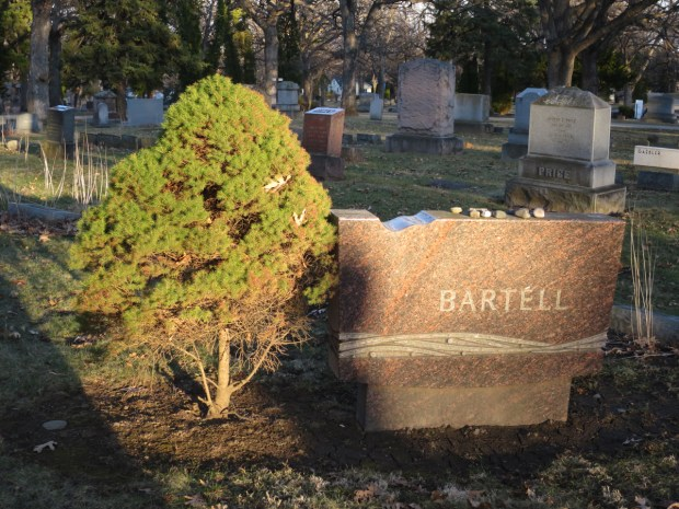 A graveside with a shrub on the left hand side of the memorial.  Photo by William Cronon.