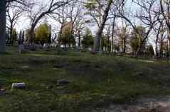 Effigy Goose Mound