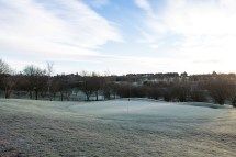 12th in the frost