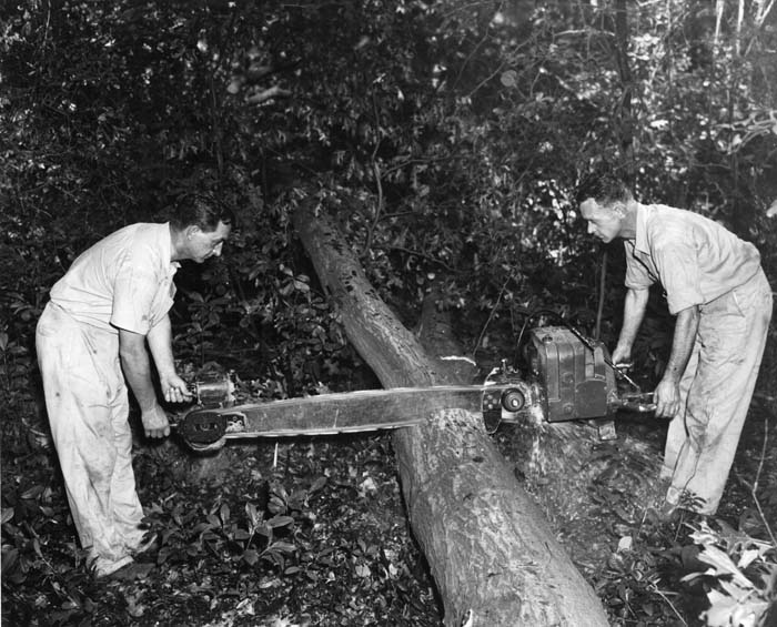 Two Man Crosscut Saw History