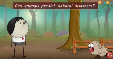 Animals Predict Natural Disasters - Forestrypedia