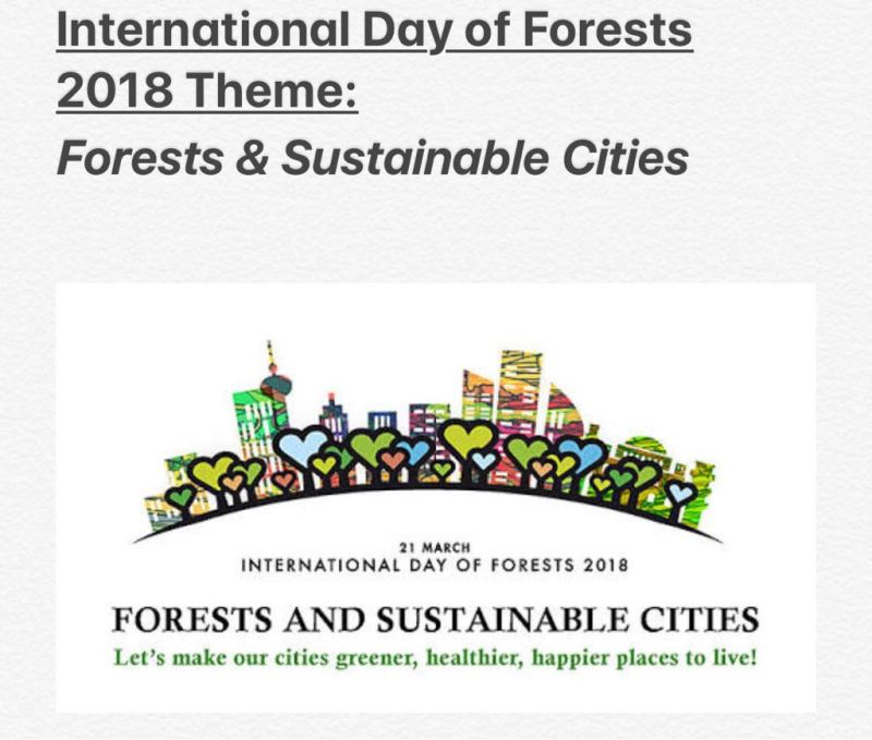 International Day of Forests 2018 Theme | Forests and Sustainable Cities | Key Messages for International Day of Forests