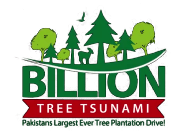 Billion Tree Tsunami Project and Status of Forest Department بلین ٹری پراجیکٹ اور جنگلات کا نظام - forestrypedia.com