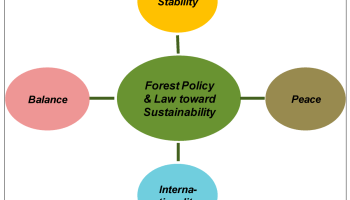 Forest Policy - Forestrypedia