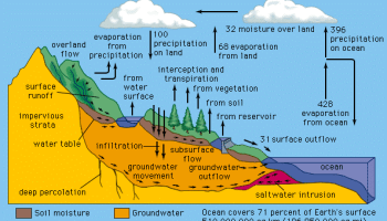 The Hydrological Cycle 2 - Forestrypedia