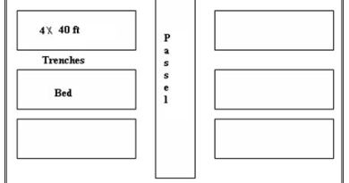 Choice of Site for Nurseries Nursery Layout - Foresetrypedia