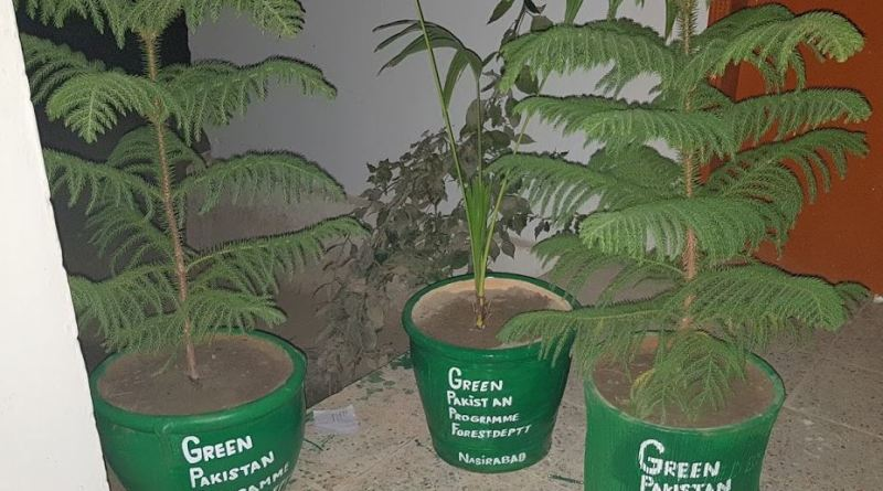 Methods of Planting - Green Pakistan Programme - Forestrypedia