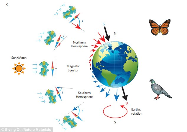cellphones and effects on wildlife - magnetic north - Forestrypedia