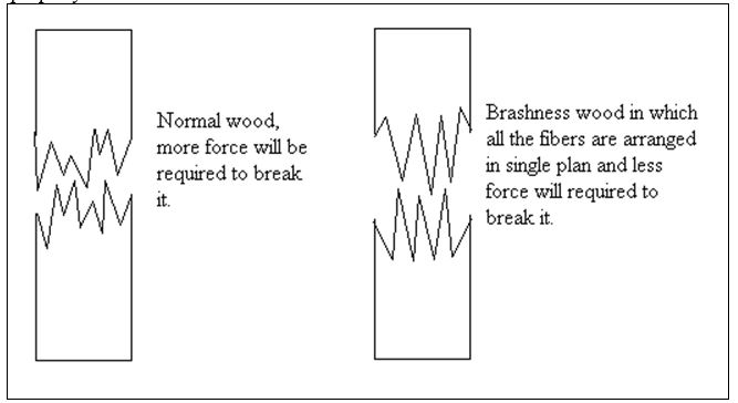Brashness - Wood Defects