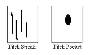 Pitch Defects - Wood Defects