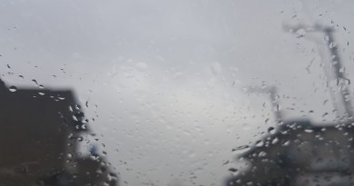 8 Things You Didn't Know About Rain - Forestrypedia
