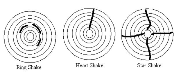 Shakes - Wood Defects