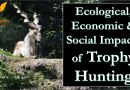 Ecological and Economic Effects of Trophy Hunting - Forestrypedia