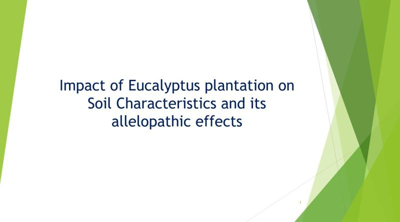 Impact of Eucalyptus Plantation on Soil Characteristics and its Allelopathic Effects - Forestrypedia