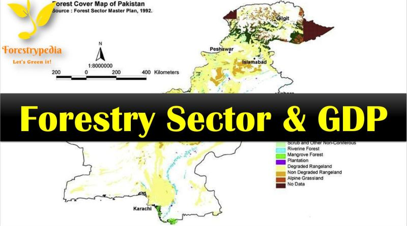 Pakistan's Forestry Sector Contribution to the Economy is the Lowest in the Region - Forestrypedia