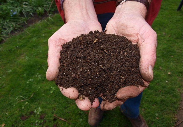 What is Compost? کمپوسٹ کیا ہیں؟ खाद क्या हैं? - forestrypedia.com