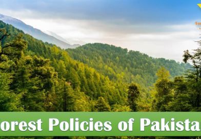Forest Policies of Pakistan - A Critical Analysis, Suggestions and Recommendations - forestrypedia.com