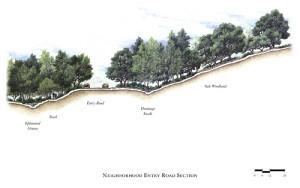 woodland horizontal structure
