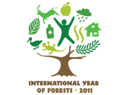 International Year of Forests