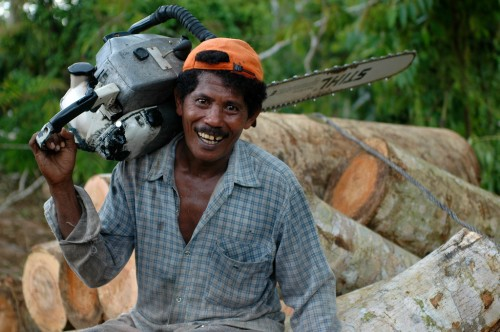 The story on logging and how it affects people and the environment may not be as black and white as many think. Jan van der Ploeg/CIFOR