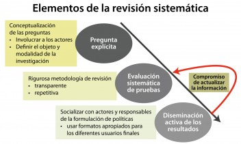 Elements of a systematic reviews, adaptado de Petrokofsky et al. 2011 y reproducido con permiso de la Commonwealth of Forestry Association