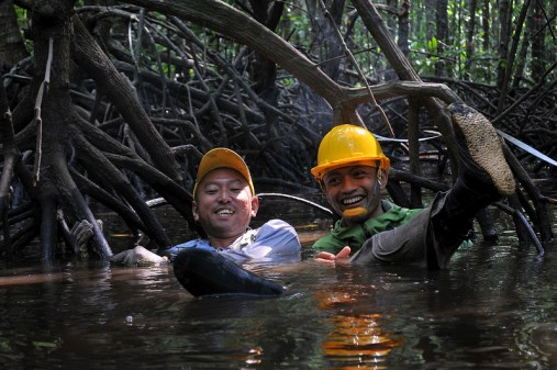 "Resaerchers Oki and Sigit in their ""theme park"" mangrove research site. Kate Evans/CIFOR."