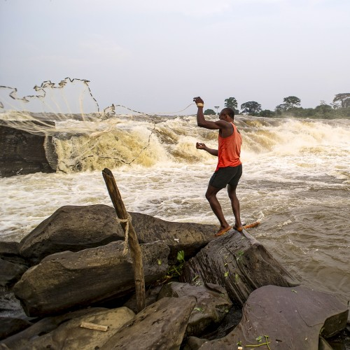 Researchers are calling for more attention to be paid to the importance of water in forest systems in Central Africa. Ollivier Girard/CIFOR.